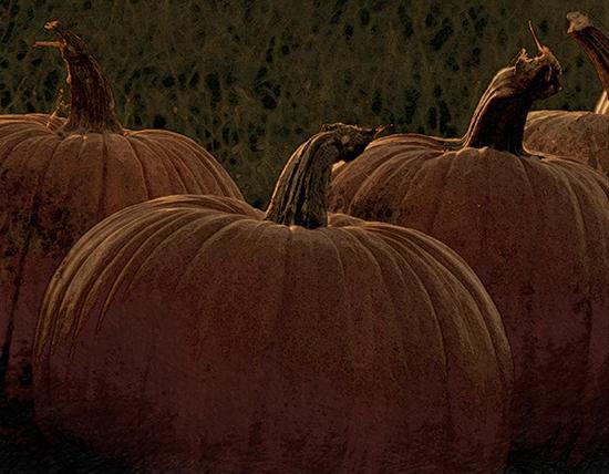 Bouncing Pumpkins